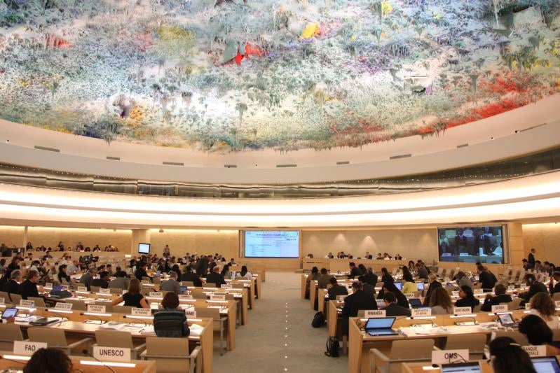 Instituţii internaţionale pentru protecţia juridică a drepturilor omului